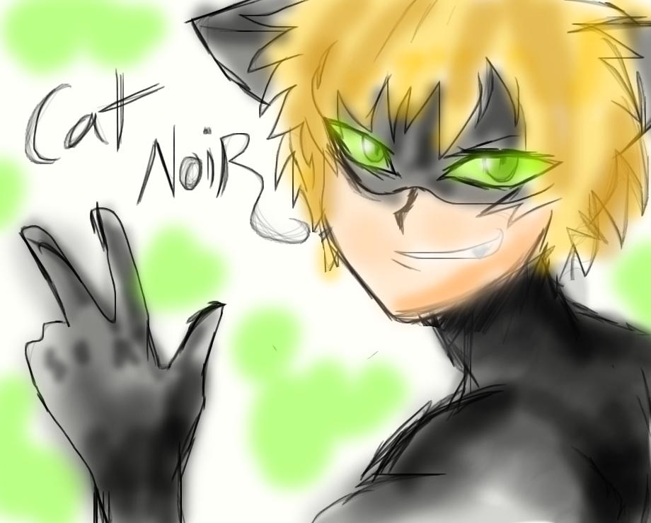 Cat noir by sonicfangirl666