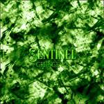 Sentinel Grunge Brush SET 2