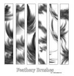 Feathery Brushes
