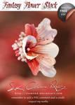 Fantasy Flower Stock V01
