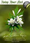 Fantasy Flower Stock V 02