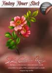 Fantasy Flower V 06