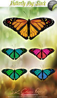 Butterfly PNG Stock V02