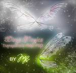 Wings Light PSD-PNG