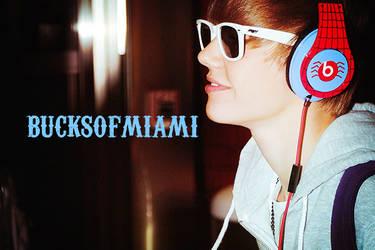 webcam 02. by bucksofmiami
