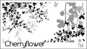TBL Cherryflower PS 7.0