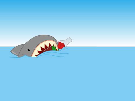 Shark Wallpaper Pack