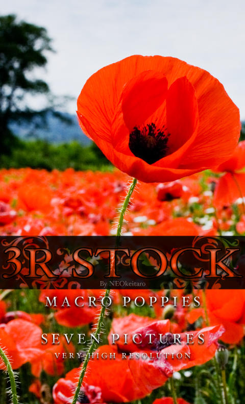 3R Stock - Macro Poppies by NEOkeitaro