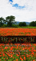 3R Stock - Poppy Field I