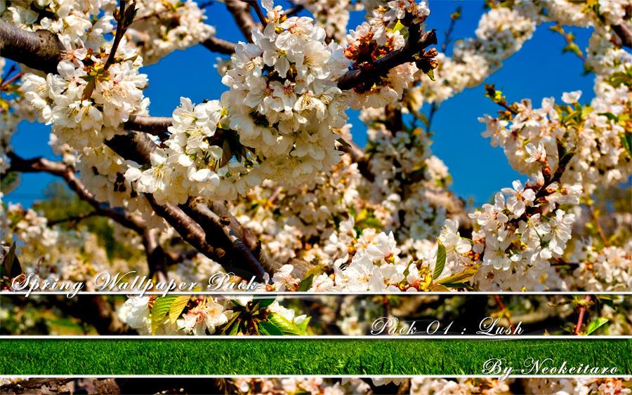 Spring Pack 01 : Lush by NEOkeitaro