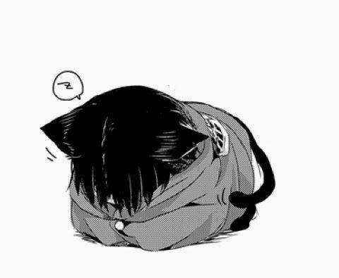 Just Fluffy [Neko!Levi x Reader] [AU] by TheNobodyofaSOLDIER