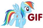 Rainbow Dash Trot
