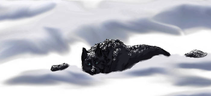 Snow-bo