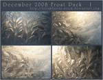 December 2008 - Frost Pack I