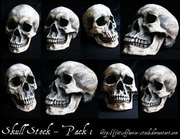 Skull Stock Pack 1 by fetishfaerie-stock