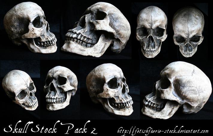 Skull Stock Pack 2 by fetishfaerie-stock