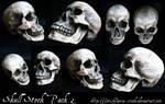 Skull Stock Pack 2