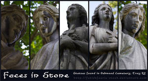 Faces in Stone
