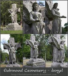 Oakwood Angel Statue