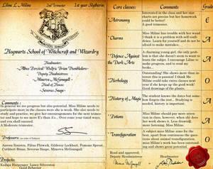 Hogwarts reportcard PSD