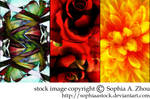 texture pack: abstract flowers