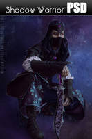 Shadow Warrior PSD file by Nikulina-Helena