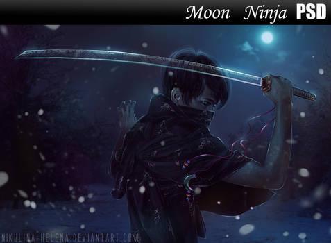Moon Ninja PSD