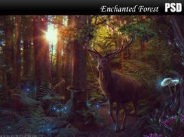 Enchanted Forest PSD by Nikulina-Helena