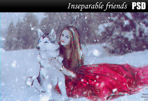 Inseparable friends PSD