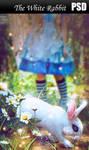 The White Rabbit PSD by Nikulina-Helena