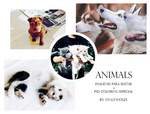 Animals [IPE + PSD Coloring] #002