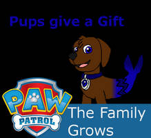 Paw Patrol  The Family Grows, Episode 07
