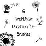 Dandelion Puff Brushes