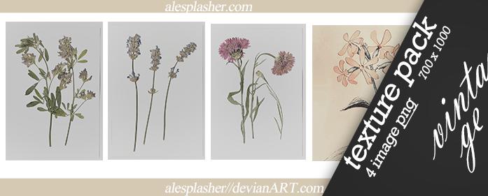 TEXTURE - Flowersvintage by Alesplashers