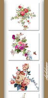 PACK PNG - Flowers