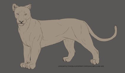 free lioness lineart