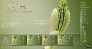 ADIAN BOLON AERO_rainmeter