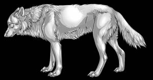 Free Wolf Template by KlakKlak