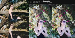 FREE    Silent Daisy- Hummingbird Photoshop Action