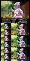 Charming colors - Collection 2015 - ACTIONS PS