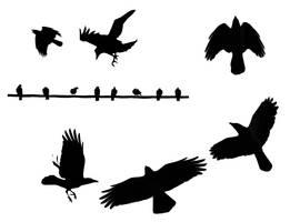 Birds Flying by Child7