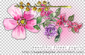Beautiful Flower PNGx10 by superjiaojiao