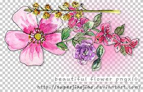 Beautiful Flower PNGx10