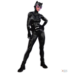 Catwoman (Z-9623)