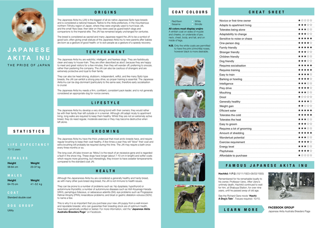 Japanese Akita Inu Factsheet by Skele-kitty