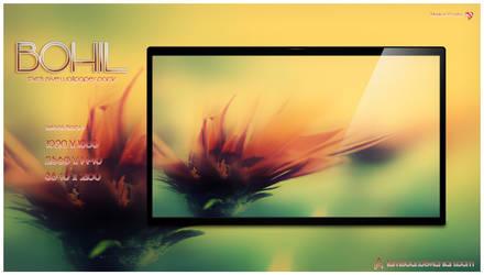 Bohil by PassMater