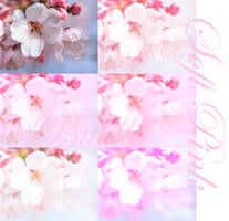 Soft Pink Photoshop Actions by Bublla