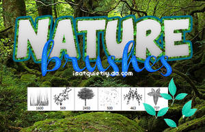 +Nature Brushes by ISatQuietly