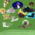 prophecies begin windclan cats