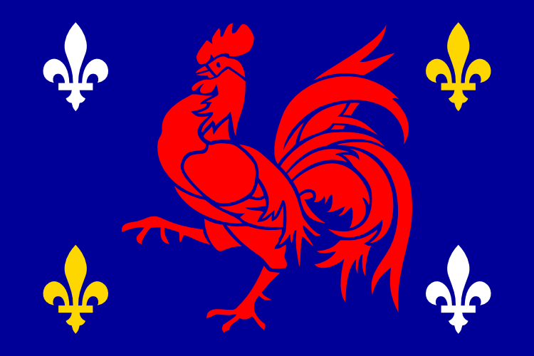 Flag of French language by hosmich
